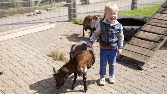 Kindje aait een geit bij speelboerderij de Flierefluiter