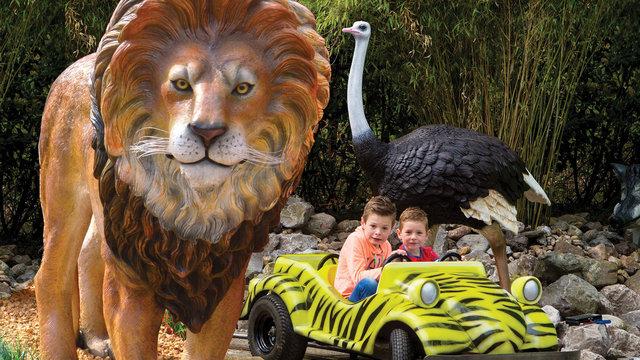Twee jongens in een tijgerauto met de safaritour door Julianatoren met een leeuw en een struisvogel