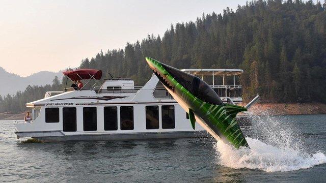 SkyShark springt door het water