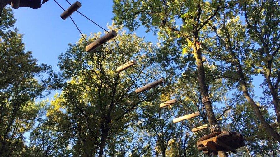 Trapeze tussen de bomen in het klimbos in Paasloo