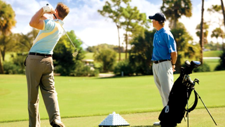 Golfles in Nederland