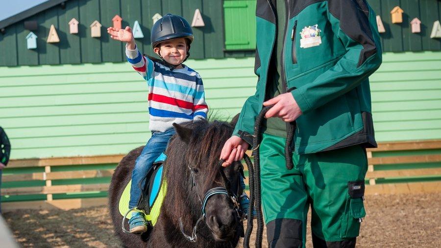 Jongen op pony
