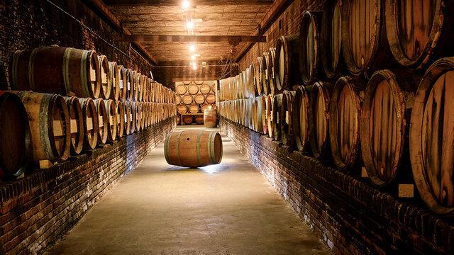 Wijnkelder Nederlands Wijnmuseum