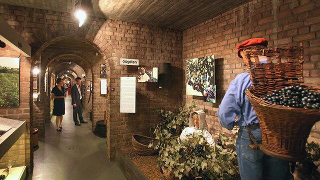 Rondleiding wijnkelder Nederlands Wijnmuseum
