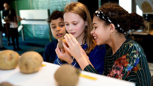 Kinderen spelen met aardappels