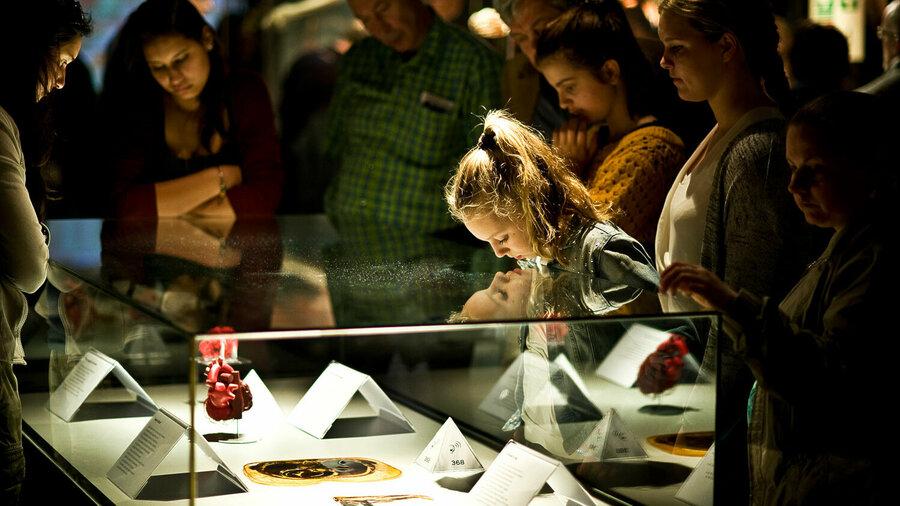Meisje kijkt naar een vitrine met informatie