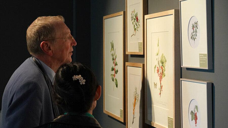 Twee mensen bekijken schilderijen van planten in Museum De Zwarte Tulp