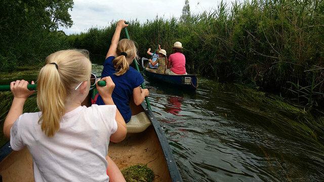 Gezinnen varen op de dommel in kano's