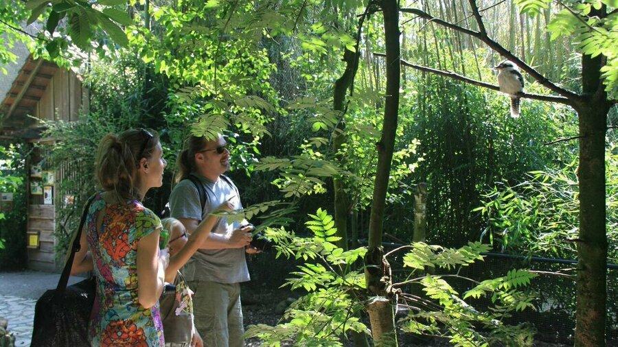 Zoogdieren en vogels vind je allemaal bij Taman Indonesia