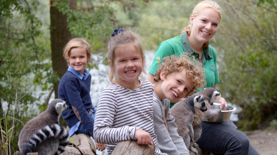 Kinderen voeren maki's in Vogelpark Avifauna