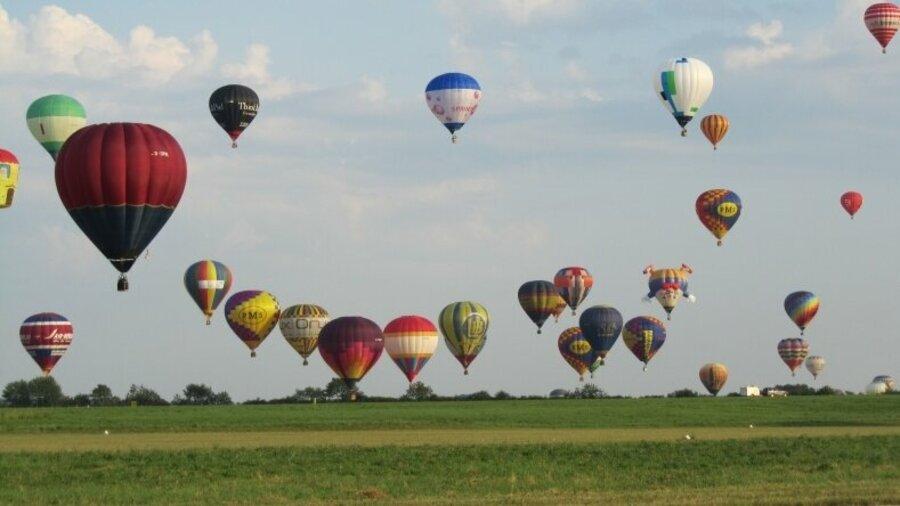 Luchtballonnen boven weiland