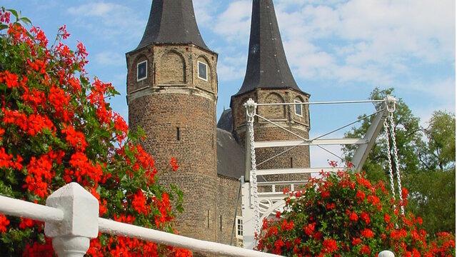 Oostpoort Geraniums Delft