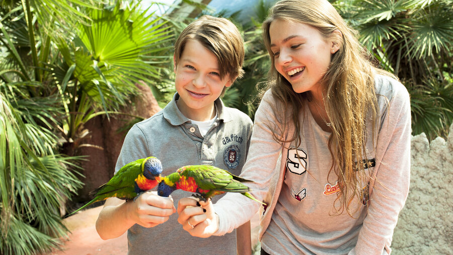 Lori's voeren in Vogelpark Avifauna