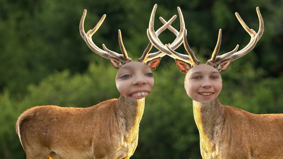Maak hilarische foto's tijdens een leuke Nature Game.