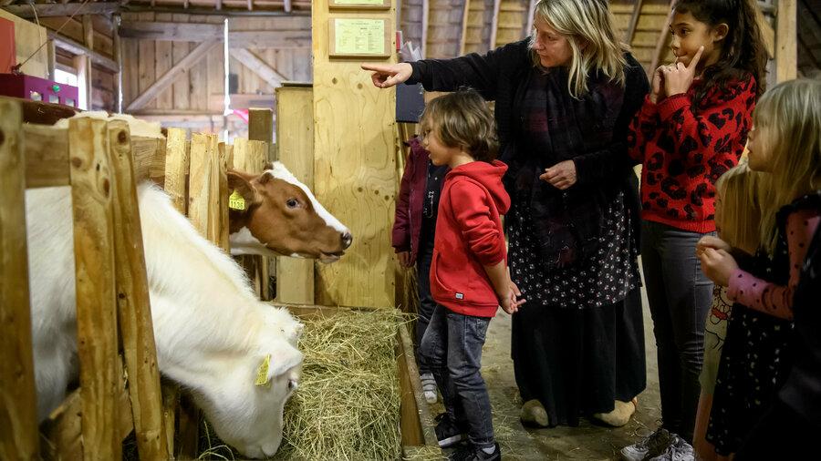 Kinderen luisteren naar de boerin over twee koeien in de stal van het Nederlands Openluchtmuseum