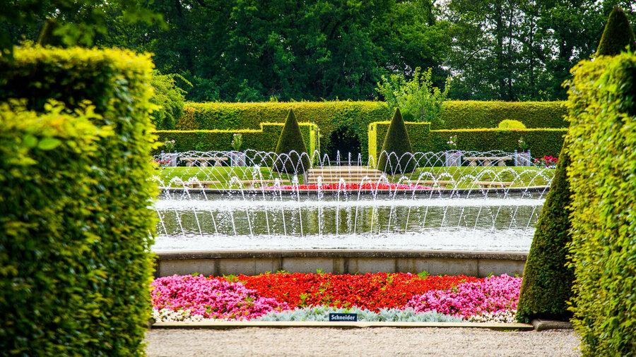 Wandel tussen duizenden rozen in het indrukwekkende Rosarium